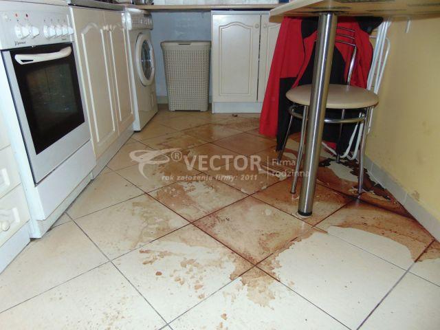 Dezynfekcja miejsca zgonu - Vector Ełk