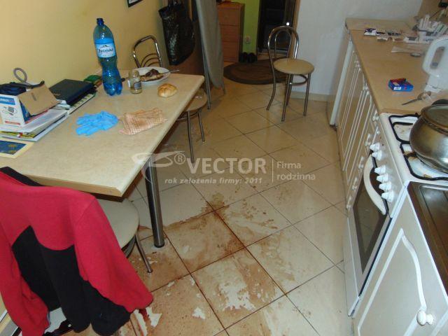 Czyszczenie po zmarłym - Vector Opole