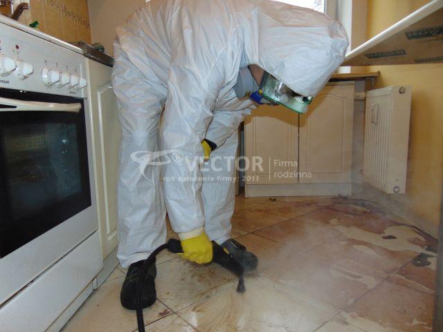 Skuteczne sprzątanie po zmarłych Puławy