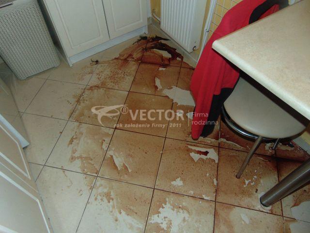 Sprzątanie po śmierci - Vector Oświęcim
