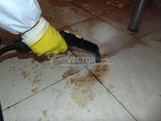 Sprzątanie po zmarłych - Vector Starachowice