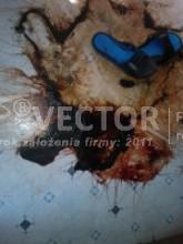 Sprzątanie po zgonie - Vector