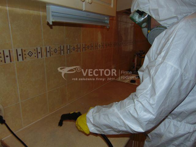 Sprzątanie po zmarłych - Vector Kalisz