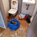 Sprzątanie po zalaniu - Vector