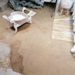 Dezynfekcja i sprzątanie po zalaniu