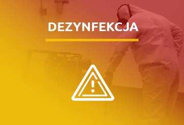 Profesjonalna dezynsekcja Vector Łódź