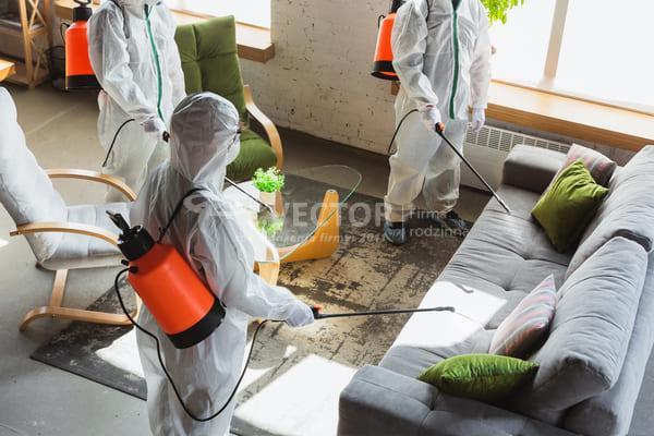 usuwanie pleśni w domu